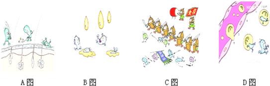 如图四幅漫画寓意的是人体免疫的三道防线:请分析图片回答下列问题图片