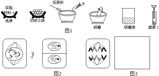 正确操作是实验成功的前提,如图1是高中生物教材中有关实验操作简图.