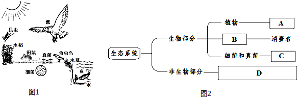 观察生态系统简图1,请回答问题