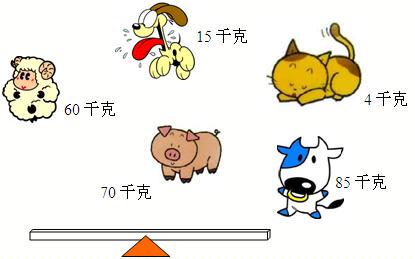 哪几只小动物一起玩,跷跷板能平衡?