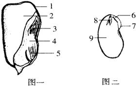 如图为我们泰山生态表情系统示意图.请v生态回a#1哒树林动态图片
