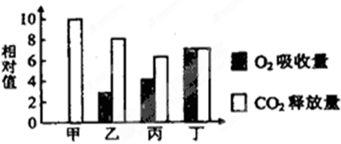 如图.下列叙述正确的是A.图示的各种万分在生态学上可以构成一个生态系统B.图示的绿色植物和各种动物在生态学上可以构成一个生长群落C.细菌与蝉之间的关系属于竞争D.蛇属于三级消费者