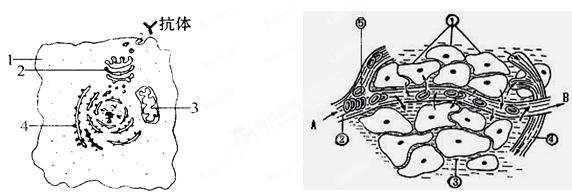 简笔画 手绘 线稿 572_192