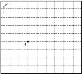 方格纸画图