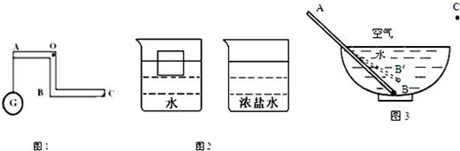 (2)有两个完全相同的正方体木块,分别漂浮在水和浓盐水中,液面位置