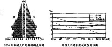 人口增长_人口自然增长预测