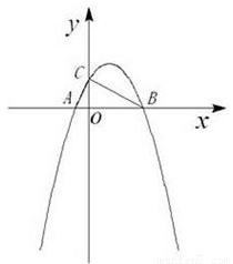 小张同学想用 描点法 画二次函数的图象.取自变量x的5个值.请你指出这个算错的y值所对应的x . 题目和参考答案 精英家教网