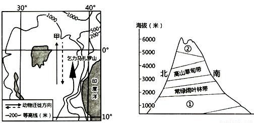 下面左图是非洲某区域示意图,右图是乞力马扎罗山垂直自然带分布示意