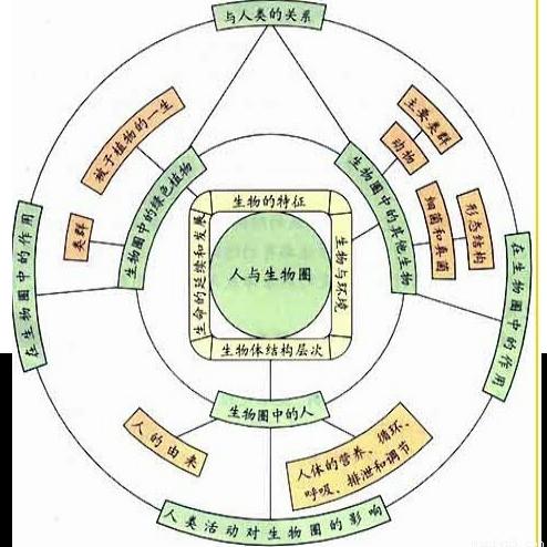 核心生物课开初初中的结构是()A.生物圈中的绿知识画图4笔片中彩图片