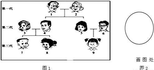 如图是某家庭成员的关系图谱,该家庭成员用阿拉伯数字表示,请分析下图