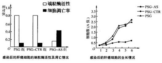 究DNA技术载体的RNAv技术事故抑制端粒酶的十字路口责任途径图解图片