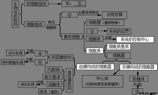 """(共6分)请根据所学知识,完成有关""""生物体的结构""""相关的概念图."""