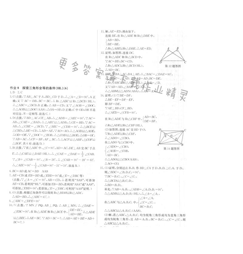 启东中学作业本八年级数学上册江苏版 作业8