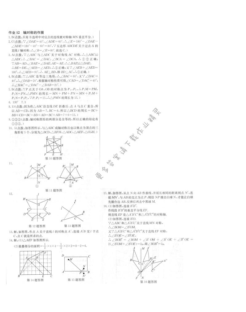 启东中学作业本八年级数学上册江苏版 作业12