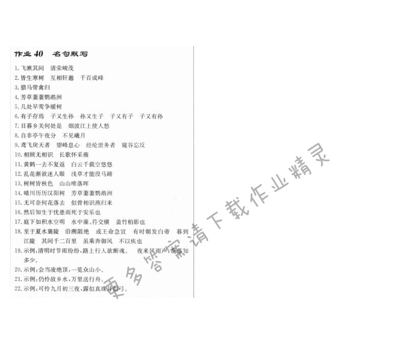 启东中学作业本八年级语文上册人教版 作业40