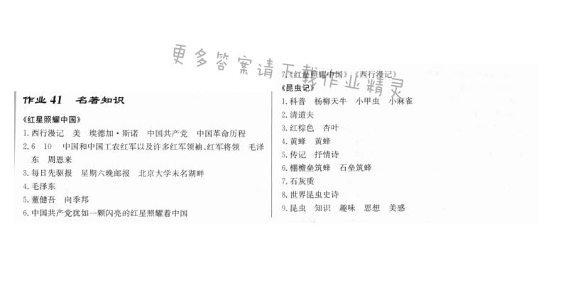 启东中学作业本八年级语文上册人教版 作业41