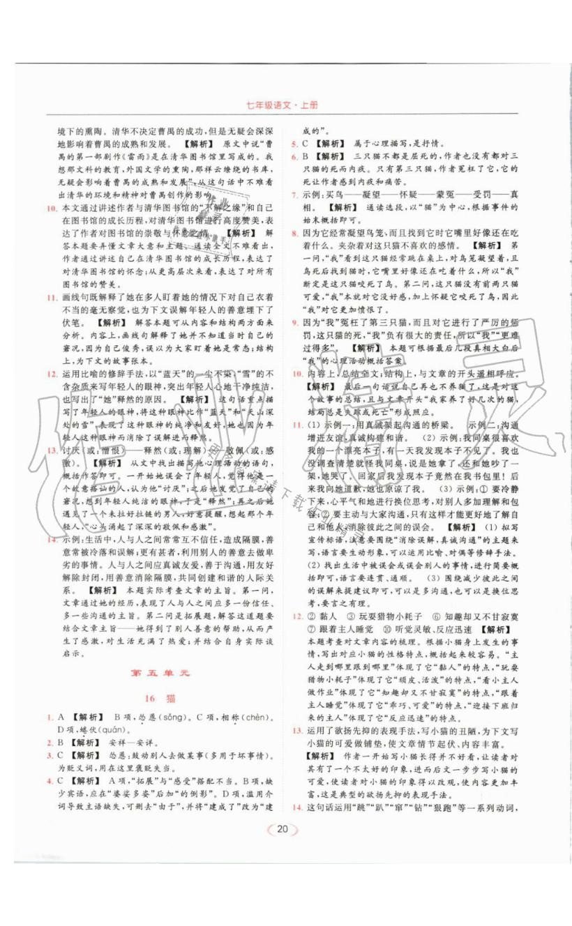 猫 - 第20页