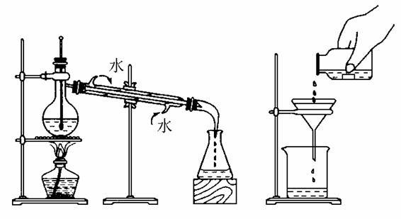 鱼洗的实验原理_豚鼠实验