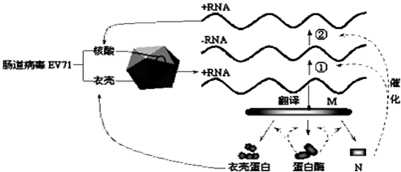 乙醇和重铬酸钾的原理_碘伏和乙醇照片