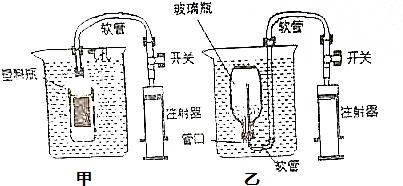 鸡蛋的沉浮实验原理_鸡蛋沉浮实验记录表