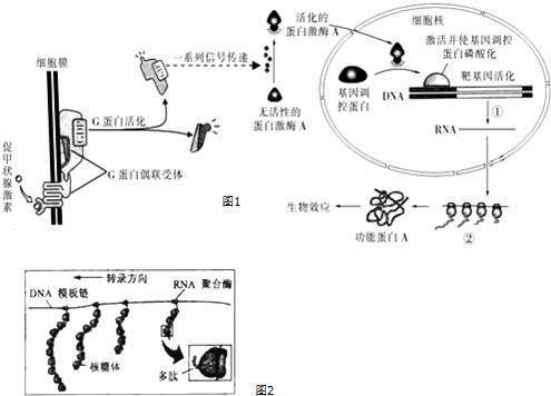 创新学的相关原理_中秋节相关图片