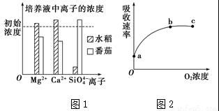 主动运输的原理_主动运输和被动运输图